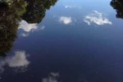 clouds-reflected